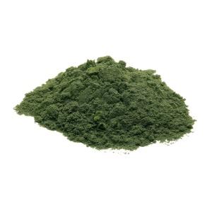 Chlorella-Powder-Only